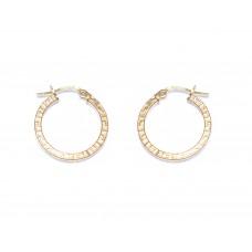 Zlaté náušnice kruhy s motivem AU0090